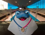 """""""LONDON, ENGLAND - MAY 02:  Mascot Ray poses for photographs during a media event at the London Aquatics Centre onMay 2, 2016 in London, England. The London 2016 LEN European Aquatics Championships start on the 9th May 2016.  (Photo by Ben A. Pruchnie/Getty Images for London 2016 LEN European Aquatics Championship)"""""""